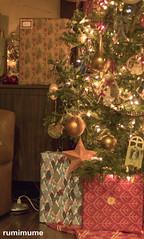 Christmas Tree (rumimume) Tags: potd rumimume 2017 niagara ontario canada photo canon 80d sigma christmas holiday december25 season tree decoration light home indoor 2018