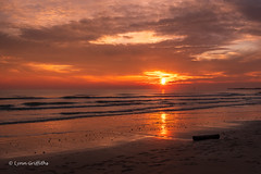 Sunset at Camber Sands D85_8115.jpg (Mobile Lynn) Tags: water eveninglight sunset beach landscape coast ocean waves landscapephotography outdoorphotography eastsussex england unitedkingdom gb