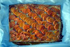 DSC_7903-61 (jjldickinson) Tags: tart persimmon fruit yuzu liqueur pastry baking dessert japanoise iichiko shochu yuzushochu sanwashurui longbeach wrigley nikond3300 105d3300 nikon1855mmf3556gvriiafsdxnikkor promaster52mmdigitalhdprotectionfilter