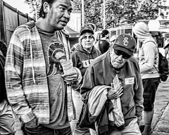 Sport Fans Series (Steve Mitchell Gallery) Tags: sports fans fan spectators rooters people men portrait portraits street streetportraits
