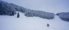 snowy day (picturesbywalther) Tags: schelten scheltenpass pass snow schnee landscape landschaft nature jura guldental weather wetter