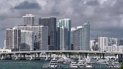 Miami Skyline (Mustang Joe) Tags: 2018 public cruise d750 caribbean newyears domain nikon