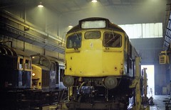 A Class 27 inside Eastfield shed, along with a classmate and 37022, on 14th August 1982. (colin9007) Tags: glasgow eastfield br diesel englishelectric sulzer brcw class 27