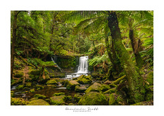 Horse Shoe Falls Tasmania HDR (Dominic Scott Photography) Tags: tasmania australia horseshoefalls waterfall waterfalls fall water hdr bracketed dominicscott ilce7rm2 a7rmii sel1635gm manfrotto leefilters gmaster mountfieldnationalpark breathtakinglandscapes