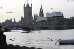 House of Parliament (louise.webber) Tags: london thames river house parliament