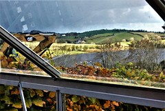 From the greenhouse (ronmcbride66) Tags: greenhouse landscape jcb glass distortion reflections beech lake drumlins swans acer woodlawn scenery codown roughgrazing rural coth