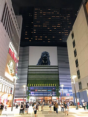 Cine City Plaza, Kabukicho - Shinjuku, Tokyo (Japan) (Andrea Moscato) Tags: andreamoscato giappone japan nippon nihon 日本 sollevante view vivid night nightlife notte notturno dark downtown darkness light luci shadow ombre city città civiccenter people persone street strada road tourist town tokyo metropoli white yellow red screen scritta writing sign 東京 kantō honshū metropolis japanese giapponese capitale capital prefecture prefettura district building edificio architecture architettura pedestrian ward quartiere business shop neon insegna commercial buildings tower square piazza theater