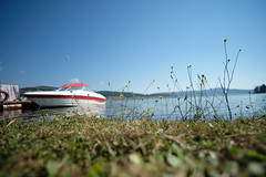 Green grass and a boat (sofia_an1) Tags: lake dam spring summer green grass blue sky boat sunny beach coast pier landscape boattrip xt2 samyang