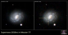 Supernova 2018ivc in Galaxy M77 (The Dark Side Observatory) Tags: tomwildoner night sky deepsky space outerspace skywatcher telescope 120ed celestron cgemdx asi190mc zwo astronomy astronomer science canon canon6d deepspace guided weatherly pennsylvania observatory darksideobservatory stars star tdsobservatory backyardeos earthskyscience m77 supernova supernova2018ivc galaxy explosion astrometrydotnet:id=nova3115411 astrometrydotnet:status=solved