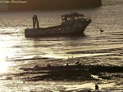 Marée basse à l'aube - Normandie  - France - Europe (Céline Bizot-Zanatta Photographie) Tags: europe france normandie sunrise soleillevant seascape paysagemarin couleuror goldcolor bateau marée mur mât