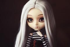 persephone (hauntiing) Tags: pullip pullips doll dolls toy toys zuora pullipzuora pullipdoll toyphotography pullipphotography dollphotography