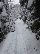 The Trail (bookhouse boy) Tags: 2019 berge mountains alpen alps 1januar2019 thiersee schneeberg pendling kaltwasser kalaalm schnee snow winter thierseetal