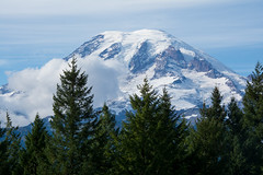 Active Volcano - Mount Rainier (Ginny Williams Photography) Tags: mtrainier mountrainier mountrainiernationalpark washingtonstate pacificnorthwest activevolcano landscape blogger travel bloggers nature trees snowcappedmountain snowcap