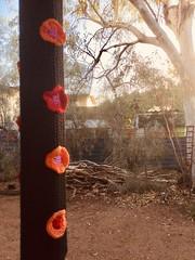 Impressions of my last housit (YAZMDG (16,000 images)) Tags: fibreart yarnbombing tree crochet