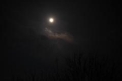 DSCF4021.jpg (madaday) Tags: nightsky lunareclipse space sky night moon stars filters edited