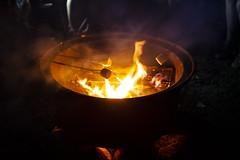 _DSC2397 (Shane Woodall) Tags: 2015 camping deerpark ella koa lily newyork shanewoodallphotography sonya7ii twins vacation