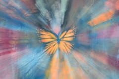 Concrete butterfly (mrsparr) Tags: activeassignmentweekly art zoomburst humberbayparkeast toronto ontario canada bestofweek1 52in2019