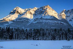 Blue Sky after a Snowstorm along the Icefields Parkway, Banff National Park (PhotosToArtByMike) Tags: icefieldsparkway banffnationalpark canadianrockies ruggedpeaks blue sky saskatchewanrivercrossing mountainview banff albertacanada mountain mountains alberta