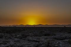 _RJS4721 (rjsnyc2) Tags: 2019 africa d850 desert dunes landscape namibia nikon outdoors photography remoteyear richardsilver richardsilverphoto safari sand sanddune travel travelphotographer animal camping nature tent trees wildlife