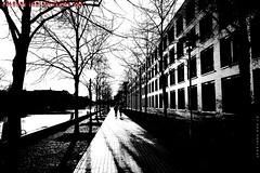 """Ins Licht"" (Cologne Cam Authentic Art) Tags: art kunst urban city street streetphoto streetphotography people blackandwhite blackwhite bw schwarzweiss monochrome bwphotography light contrast abstract oldenburg germany deutschland hafen port streetshot"