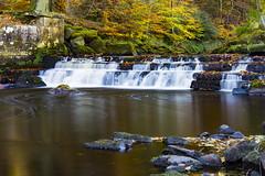 Washburn Valley, Harrogate (Kingsley_Allison) Tags: washburnvalley riverwashburn harrogate river autumncolours autumn water nikon nikond7200 northyorkshire yorkshirewater kayak canoe thruscross kayaker britishcanoeing thruscrossresevoir
