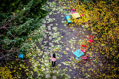 Jardin de la bibliothèque de Sciences Po (Calinore) Tags: feuillesmortes automne sciencespo jardin garden paris france autumn nature