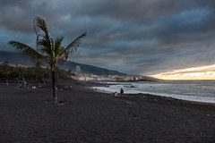 playa jardin | puerto de la cruz (John FotoHouse) Tags: playajardin puertodelacruz tenerife canaries sunset beach coast palms sand dolan flickr fujifilmx100s fuji johnfotohouse johndolan leedsflickrgroup copyrightjdolan colour color 2018 november