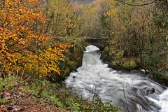 Raging river (Nige H (Thanks for 15m views)) Tags: nature landscape water river snowdonia wales betwsgarmon autumn
