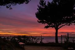 Le ciel de ce mardi 23 Octobre ! (guyju) Tags: saintbriacsurmer soleil france bretagne britanny côtedémeraude balcondemeraude mer ciel bluehour heurebleue nessay