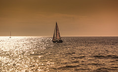 das goldene Meer (*AdeCo*) Tags: meer ozean ocean ostsee sailing sailingship segelboot abend nacht sonnenuntergang night sundown glitzern licht light glitter sparkle water wasser wellen waves gold