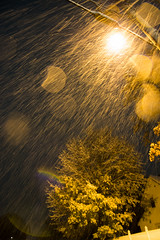DMP_6987 (alohadave) Tags: autumn effects fall massachusetts night norfolkcounty northamerica overcast pentaxk3 places quincy season sigma1750mmf28exdchsm sky snowing southquincy unitedstates