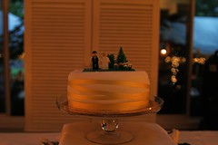 """The Wedding Cake • <a style=""""font-size:0.8em;"""" href=""""http://www.flickr.com/photos/109120354@N07/45192927215/"""" target=""""_blank"""">View on Flickr</a>"""