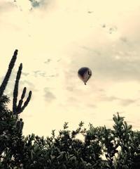AZ Sunrise (Carla Putnam) Tags: balloon arizona az peoriaaz peoria balloonride