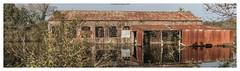 Bembridge Lagoon (frattonparker) Tags: afsnikkor28300mmf3556gedvr btonner isleofwight lightroom6 nikond810 raw solent winter frattonparker boathouse corrugated wrigglytin derelict deserted abandoned building reflections
