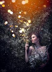 Fairy Lights ({jessica drossin}) Tags: jessicadrossin portrait photography lights bokeh christmas pretty face fairy magic snow leaves wwwjessicadrossincom