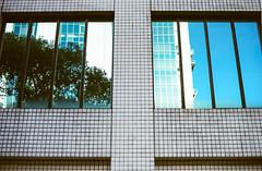 (andidrew) Tags: nikon f6 nikonf6 nikkor nikonnikkordlens ai af 50mm 50mmf14d 50mmf14 f14 f14d portra portra400 iso400 iso 400 135film negative 135negative negativefilm taipei taiwan