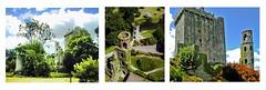 Enchanting Blarney Castle, County Cork Ireland (Gail K E) Tags: ireland cork blarneycastle countycork castle medieval architecture blarneystone amazing dramatic éire