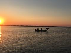 IMG_5243 (francesxcabrini) Tags: chincoteague assateague island ocean sea sunset beach