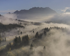 The Enchanted Forest (Andrew G Robertson) Tags: mist fog drone dji mavicpro2 germany garmisch partenkirchen gerold geroldsee bavaria deutschland mavic