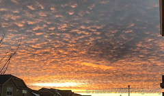 January 26, 2019 - A stunning Colorado sunset. (Heather Walker Foglesong)