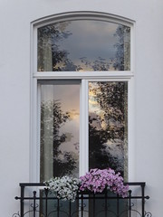 Window reflection (seikinsou) Tags: brussels belgium bruxelles belgique summer midsummer square marielouise dusk window reflection sky tree windowbox