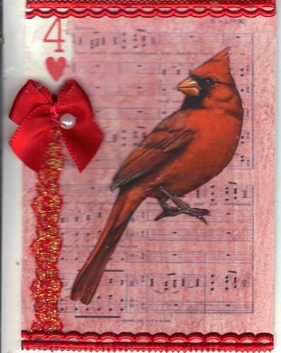 Red Cardinal apc