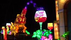 27 le vignoble de Gaillac (christine.petitjean) Tags: gaillac festivaldeslanternes2018 chine tang