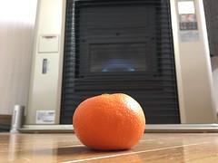 Warming up a Mikan (sjrankin) Tags: 14december2018 edited fruit orange mandarin mandarinorange mikan floor heater livingroom kitahiroshima hokkaido japan closeup