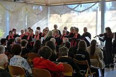 Concert d'hivern Intergeneracional  (50)
