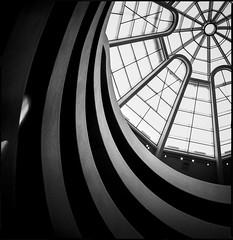 img411 (Jurgen Estanislao) Tags: guggenheim museum new york manhattan black white analog film vintage photography monochrome jurgen estanislao hasselblad 500 cm carl zeiss planar t 80mm f28 ilford hp5 plus kodak hc110 g