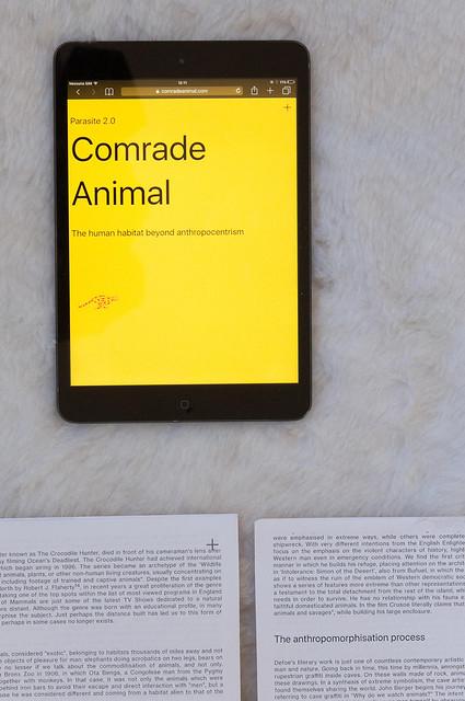 2018. Comrade Anima. Parasite 2.0, Progetti Internazionali