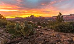 ... (Kris Kumar) Tags: 2018 august scenic travel usa wideangle arizona az sedona lowlight