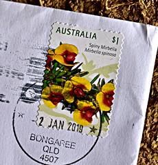 Spiny Mirbelia [mirbelia spinosa],Wild flower (Dreaming of the Sea) Tags: 2019 nikond7200 tamronsp2470mmf28divcusd australia stamps 1 bongaree bribieisland queensland spinymirbelia wildflowers verascarthjohnsonwildflowerreserve