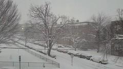 20190113_162806 | Snow in Washington, D.C. (Stephenie DeKouadio) Tags: outdoor virginia snow washington washingtondc dc